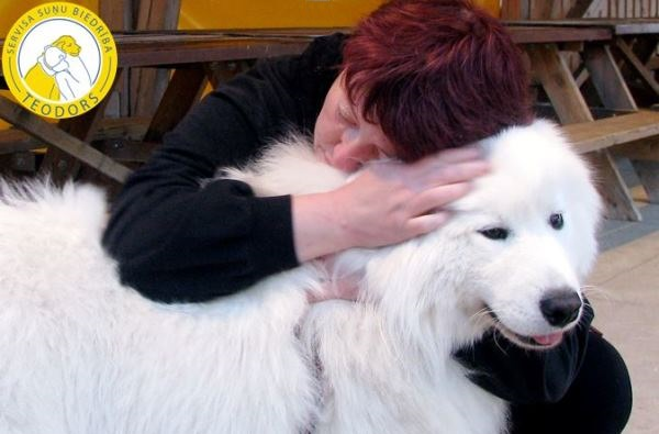 How nice it is to feel the soft coat the warmth and love of a therapeutic dog September 2014