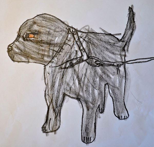 Redzīgo bērnu zīmējumi 5