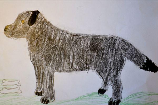 Redzīgo bērnu zīmējumi 6