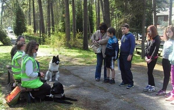 Vaivaros skolnieki iepazīstas ar suņiem-pavadoņiem un viņu darbu. Daži šādus suņus redz pirmo reizi.