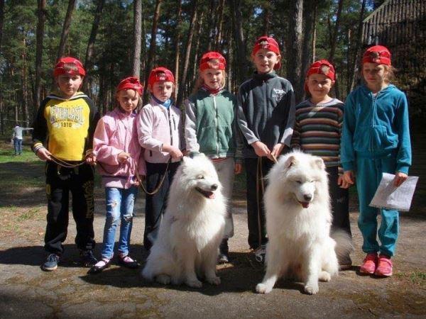 Canis terapija