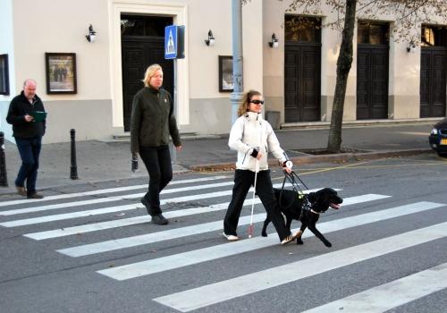Beāte ar suni-pavadoni piedalās sacensībās, Rīgā 2013.g.oktobrī